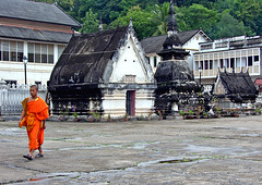 Orange in grey (riclopes 2008 (away meditating...)) Tags: temple luangprabang watmai