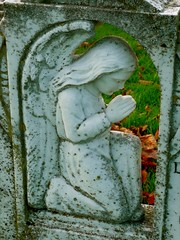 Angel (cherington) Tags: england cemeteries graveyards gloucestershire churchyard cheltenham staue panasonicdmctz3