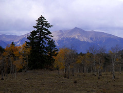 Mount  Princeston (truan) Tags: autumn mountain fall landscape scenery colorado chaffeecounty mountprinceston