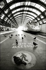 Forbidden Planet (Mayastar) Tags: train milano pigeons centralstation forbiddenplanet piccioni divietodaccesso fotoricordo mayastar