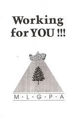 MLGPA brochure - logo