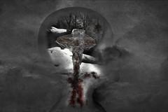 Trauma (h.koppdelaney) Tags: snow art digital self dark frozen blood energy christ cross state symbol kreuz holy vision mind passion lamb duality split metaphor consciousness psyche trauma sacrifice symbolism psychology heilig archetype animus crucified lamm notniceart