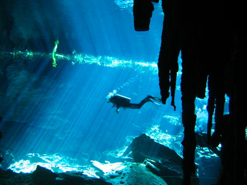 Cenote diving 1