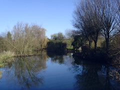 Little Lake (iSeeStars) Tags: uk blue winter sky lake water woods british essex millpond chelmsford