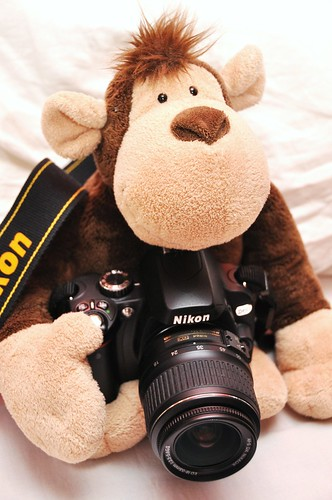 Monkey with a Camera by rosswebsdale, on Flickr