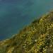 Etretat-20110518_8494.jpg