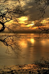 On Golden Pond, The Severn at Sunrise (-terry-) Tags: sunrise river dawn severn riversevern thumbsup soe daybreak blueribbonwinner supershot beachley flickrchallengewinner 15challengeswinner platinumheartaward