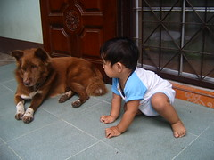 Note 020 (addachin) Tags: boy dog baby children thailand friend child feel