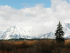 Jackson Hole / Landscape (little-wings) Tags: summer mountains nationalpark may wyoming teton  2008 jacksonhole wy jac grandtetonnationalpark