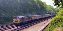 Sonning Cutting, 1974. (Fray Bentos) Tags: train locomotive britishrailways dieselhydraulic class52 westernregion d1043westernduke sonningcutting