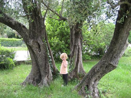 Sophia in Wonderland