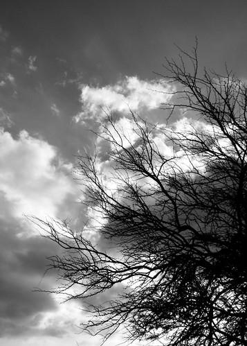 Keawe Storm