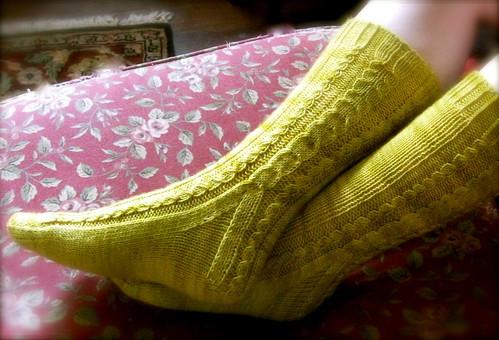 Saguaro Socks