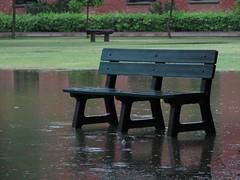 "Bench in rain (rchughtai -- ""not very active"") Tags: pakistan green rain bench raining lahore moonsoon summerrain lums"