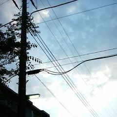 【写真】ミニデジで撮影した朝の風景(朝焼けの空と電灯)