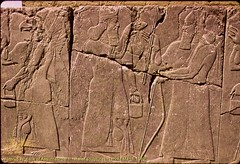 Nimrud.  Palace of Ashurnasirpal II.  Relief Sculpture of Human Figures.  March 1989. (StevanB) Tags: sculpture iraq relief assyria ashurnasirpal nimrud kalhu calah stevanb