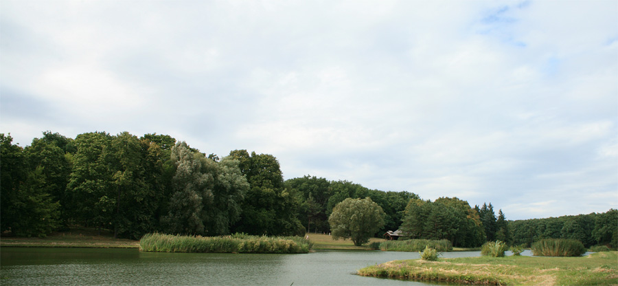 Goluchow Park / Poland