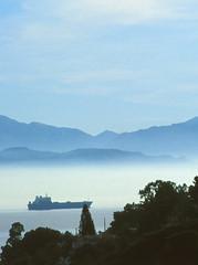 palermo (zecaruso) Tags: sea italy fog alberi boat barca italia mare nave porto caruso palermo nebbia ciccio nikonf601 addaura zecaruso cicciocaruso