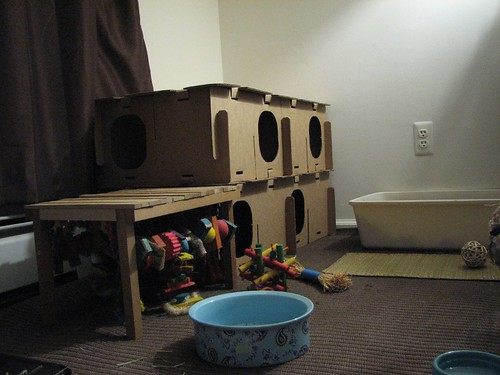 new bunny castle (ground level)