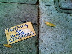 A Sign Of Human Kindness... (the roadiegirl) Tags: sf sanfrancisco california ca street leaves walking concrete leaf random streetsign testing sidewalk cardboard karoline iphone humankindness karolinecollins theroadiegirl iphonephoto