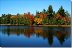 Autumn on the Flowage (nature55) Tags: autumn lake wisconsin colorful northwoods tff abigfave colorphotoaward wtmwchallengewinner tutrleflambeauflowage