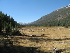 JMT-ToulumneToReds-4.JPG Photo