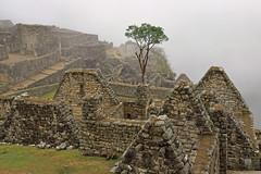 Peru_Machu_Picchu_Mist_Oct_08-19