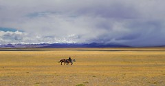 Nam tso plains Tibet,   (reurinkjan) Tags: nature tibet namtso 2008 sept changtang namtsochukmo nyenchentanglha tibetanlandscape tengrinor visipix janreurink damshungcounty damgzung