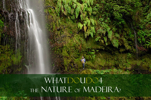 What do you do for the Nature of Madeira?
