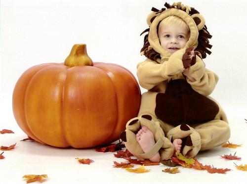 Age 2 - Lion