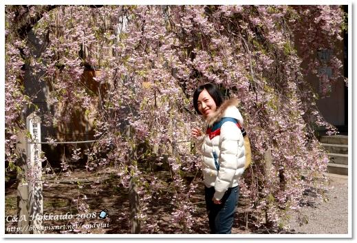 Hokkaido_2102