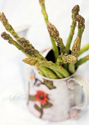 Asparagus Study #1