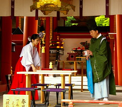 Preparant un casament / Preparing a marriage (SBA73) Tags: red colors japan table japanese rojo shrine colours boda marriage nippon vermell miko nara shinto kansai nihon jap casament preparations santuario kasuga japn  kasugataisha shintoism taula roig   santuari  kannushi  colourartaward artlegacy