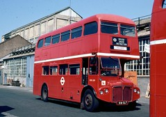 242-11 (Sou'wester) Tags: bus london heritage buses training icon works routemaster publictransport lrt goldenjubilee lt chiswick psv parkroyal rm londontransport tfl openday aec prv rml classicbus