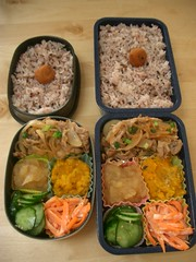 (Buta-don bento) with veggies (skamegu) Tags: vegetables pumpkin salad rice cucumber pork carrot bento japanesefood applesauce     buta     porkbowl