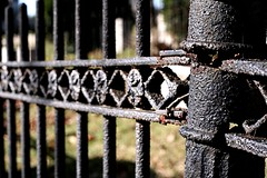 Plot Fencing (The Andrea) Tags: november autumn fall me cemetery fence virginia phil wroughtiron angles statues richmond hollywoodcemetery jeffm mikeb surroundbylight