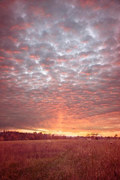 Kentucky Sunset  (small)