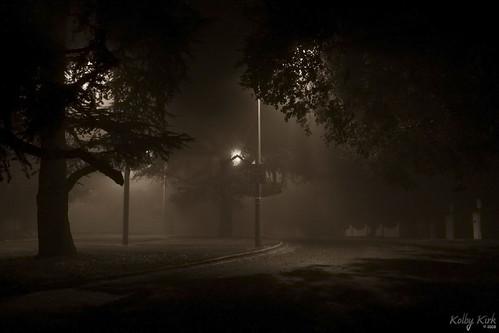 Fog 2008 2