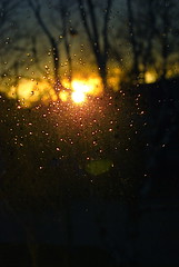 Golden Raindrops (Tomitheos) Tags: november winter sunset canada golden amber flickr poetry poem december daily now today 2008 stockphotography darkskies luminosity glowlight cusp fogandrain   tomitheos griffinpoetryprize  poemspoetrylyrics photographwithapoem songstopics