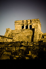 Close-up of Tulum