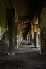 (Yvette van der Velde) Tags: abandoned decay kentucky urbandecay trainstation louisville 2009 baxterroad