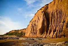 Limantour Beach (Penelope's Loom) Tags: ocean california beach nikon marin marincounty pointreyes d200 limantourbeach limantour pointreyesnationalseashore interestingness419 explored 18200vr i500 explore21mar08
