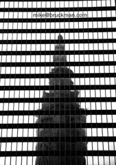 Terminal Reflection (thecolorofsound) Tags: city shadow ohio usa distortion fish plant abstract reflection building tree tower art