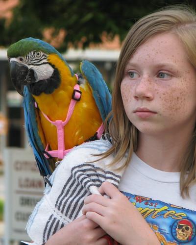 macaw 6763