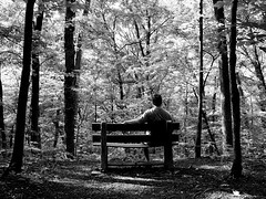 wish you were here (K e v i n) Tags: trees blackandwhite bw selfportrait me nature forest bench illinois woods kevin alone il wishyouwerehere southernillinois scenicview craborchard righthere rockybluff craborchardnationalwildliferefuge rockyblufftrail