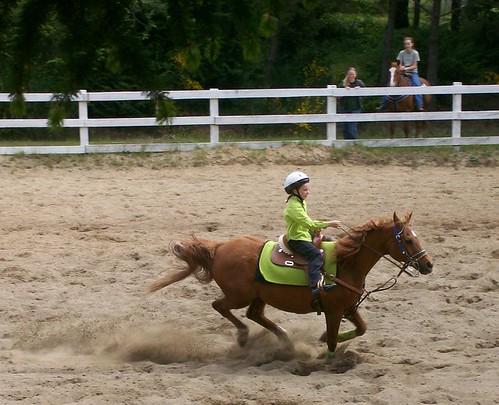 Horse Playday
