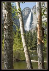 YosemiteFalls (HansWobbe) Tags: yosemitefalls waterfall nationalpark waterfalls yosemite 200805 specland hightsierra frhwo diamondclassphotographer flickrdiamond elpasojoes frhwofavs theunforgettablepictures naturenolimits theunforgettablepicture goldstaraward hworank 200805yosemite