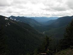 views3