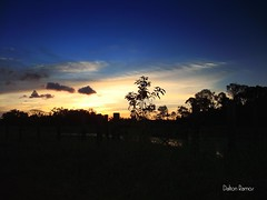 Sunset (Adalton Ramos) Tags: blue sunset brazil sol nature brasil landscape flickr shadows sony natureza great bonito paisagem cu prdosol xingu dalton sombras par ramos altamira captura poente amaznia daltonramos bemflickrbembrasil