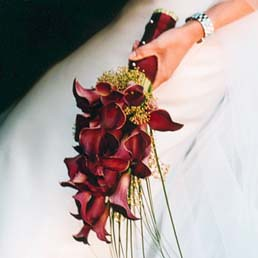 Red Calla Lilies Arm Bouquet